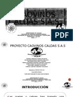 Caovinos-CALDAS-S.A.S-08-04-2016 final (1)