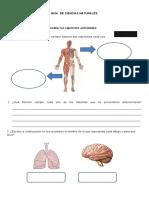 Ciencias Naturales Abril Covid19.doc