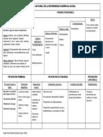 Historia-Natural Diarrea infecciosa..doc