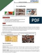FICHA DE CIENCIA Y TECNOLOGIA