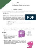 9. colon, vesicula y pancreas (1)