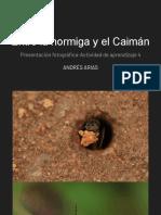 Entre la hormiga y el Caimán