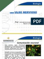 Impulso Nerivoso y Neurogénesis--GISCARD