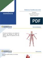 presentación sistema cardiovascular.pdf