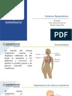 presentación sistema respiratorio- sistema renal.pdf