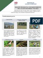 Boletín Técnico 01.pdf