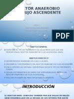 REACTOR ANAEROBICO DE FLUJO ASCENDENTE GRUPO 1