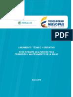 Lineamiento-Ruta-promoción-de-la-salud-consulta_pública (1).docx
