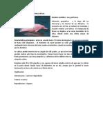 Delfín del rio amazonas.docx