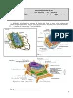 Ficha de Exercicios célula e biomoléculas