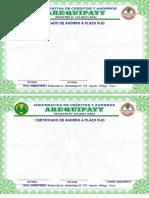 CERTIFICADO AREQUIPAYY - II ORIGINAL.docx