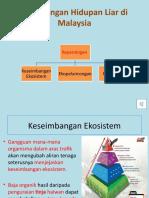 5.2 Kepentingan Hidupan Liar di Malaysia.pptx