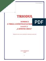 triod-duminica-3