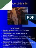 Curs Cancerul de San - Romana