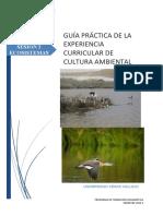 GUÍA PRÁCTICA 02. CA (1) (1)