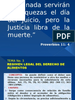 DIAPOSITIVA TEMA 3, REGIMEN LEGAL DEL DERECHO DE ALIMENTOS