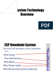 ESP1 Overview With Animation 08