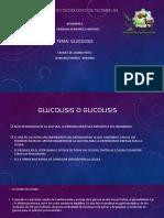 glucolisis equipo 1