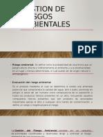 GESTION DE RIESGOS [Autoguardado]