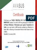 Plantas Medicinais e Fitoterápicos_Certificado de Conclusão.pdf