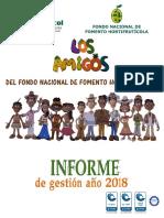 Informe de gestion 2018 FNFH.pdf