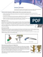 A-Poda-de-Árvores-Jovens.pdf