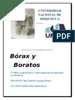 borax.docx