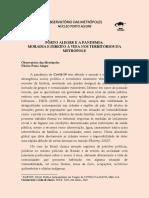 Porto Alegre e a pandemia - Observatório das Metrópoles
