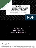 1) EL SISTEMA NERVIOSO CENTRAL_ BASES PSICOBIOLÓGICAS DEL COMPORTAMIENTO .pptx