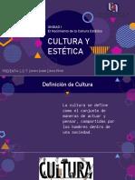 Cultura y estética