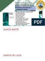 LAPAROTOMIA EXPLORATIVA (1)