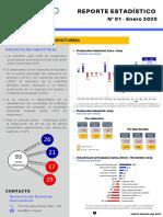Reporte-Estadístico-Enero-2020.pdf