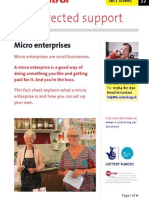 In Control Factsheet 37 Micro Enterprises