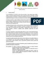 vvoo-PropuesasReactivacionEconomiaAICampesinas.2020