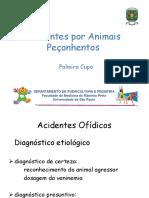 Acidentes por Animais Peçonhentos 2019