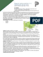 Clasificacion_de_las_hojas_Caracteristic.docx