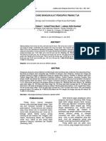 19918-46819-1-PB.pdf