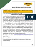 S2_Guía 2(1)