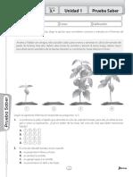 Avanza Ciencias 3 Pruebas Saber.pdf