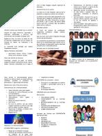 381969367-INTERCULTURALIDAD-TRIPTICO-docx.docx