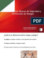riesgos 1.pdf