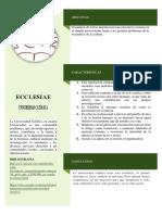 EDUCACIÓN.pdf
