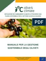 Olivo sostenibile