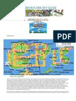 POKEMON_FLORA_SKY_GUIDE_Quick_guide.pdf