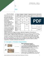 El_procesado_digital
