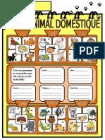 anımaux AVOIR domestique
