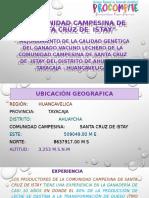 COMUNIDAD CAMPESINA DE SANTA CRUZ DE  ISTAY