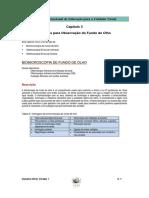 03 Fundus methods PT.pdf