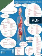 Carcinogens - Carcinogens by Sites of Body (IARC).pdf
