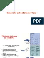clase_sistema_nervioso (1)